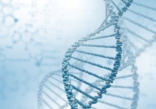 testy DNA na ojcostwo Gdańsk